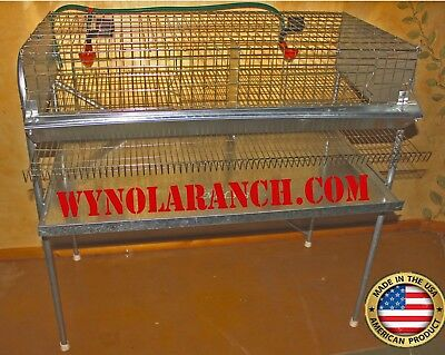 Quail Layer Cages Breeding Pens Hatching Eggs