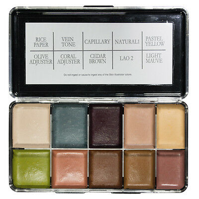 PPI Premiere Products Skin Illustrator Alcohol Activated Palette, Holmes