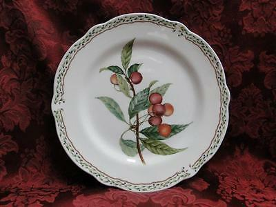 Noritake Royal Orchard, 9416, Fruit, Vine Border: Salad Plate (s), 8.5""