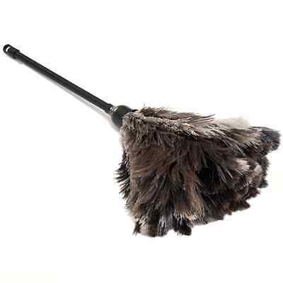 One ( 1 )  Professional Grey Ostrich Feather Duster 500Mm Overall First Grade