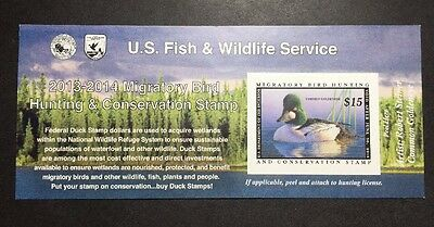 #RW80A 2013 - 2014 - US Federal Duck Stamp - Post Office FRESH