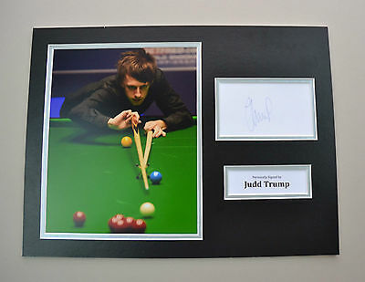Judd Trump Signed 16x12 Photo Autograph Display Snooker Memorabilia + COA