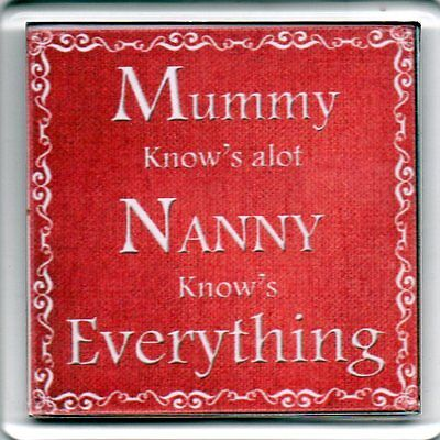 FRIDGE MAGNET Quotes Saying Gift Present Novelty Funny NANNY KNOWS EVERYTHING