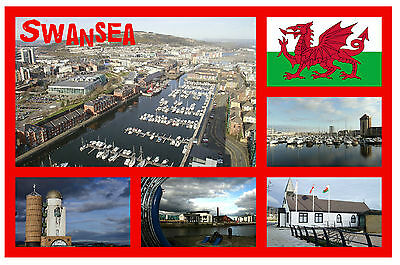 Swansea, South Wales - Souvenir Novelty Fridge Magnet - Sights / Towns - New