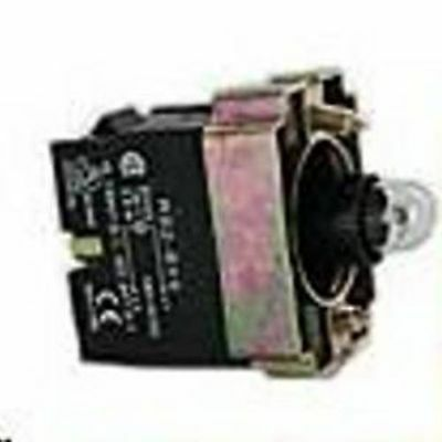 Pilot Light Base Direct With Bulb  Replaces Tele Zb2Bv6