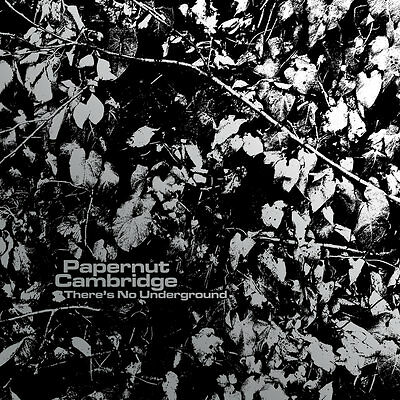 "PAPERNUT CAMBRIDGE There's No Underground 3 x vinyl 7"" + MP3 NEW Darren Hayman"
