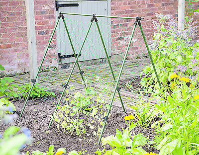 Gardman Pea Frame Support Garden Patio Outdoors Indoors Durable Easy To Assemble