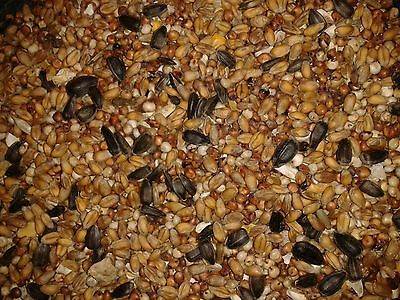 30kg Wild Bird Food for All Seasons - Feed - Mix - Seed