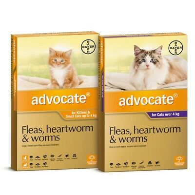 ADVOCATE for Cats - Fleas, Heartworm,Hookworm, Roundworm & Ear Mites 3-Pack