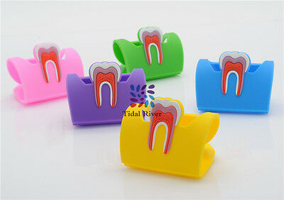 Dentist Lab Tooth Business Name Card Holder Case Display Stand 5Color