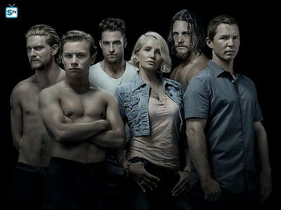 "961 Hot Movie TV Shows - Animal Kingdom 6 19""x14"" Poster"