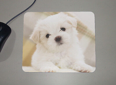 Maltese Puppy - Dogs Lovers - Novelty Gift - Custom Name Mouse Pad