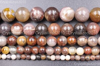 Natural Gemstone Petrified Wood Silicified Quartz Crystal Round Healing Beads