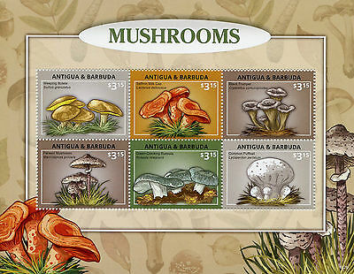 Antigua & Barbuda 2015 MNH Mushrooms 6v M/S Bolete Russula Puffball Stamps