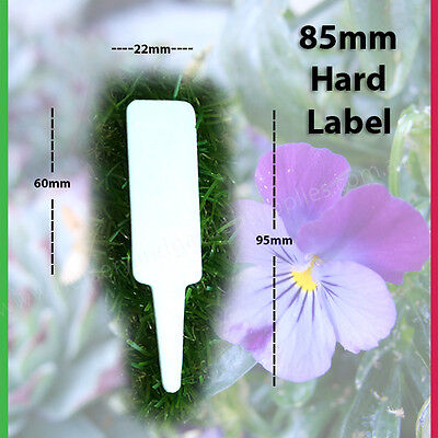 85mm Plastic Plant Tag / Label