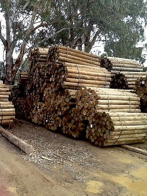 Treated Pine Poles: 125 - 150mm at 6ft.