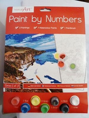 Paint by numbers watercolour paints by Work of Art 2 pictures