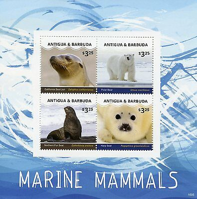 Antigua & Barbuda 2016 MNH Marine Mammals 4v M/S Seals Polar Bears Stamps
