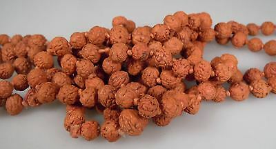Antique Chinese Dried Fruit Pit Bead Necklace