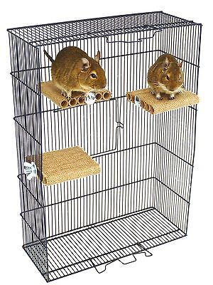 Degu Shelf - Small pet toy, degu, rat, gerbil, hamster, cage accessory.