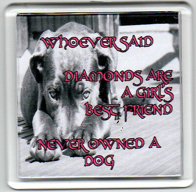 FRIDGE MAGNET Quotes Saying Gift Present Novelty Funny DOGS