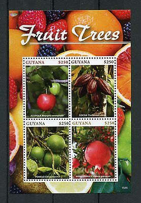 Guyana 2015 MNH Fruit Trees 4v MS Fruits Acerola Cocoa Pomelo Pomegranate Stamps