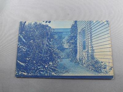Blue Postcard Side Of House Ivy Brick Wall Gardens