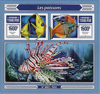 Togo 2015 MNH Fishes 2v S/S Fish Rock Beauty Boeseman's Rainbowfish Stamps