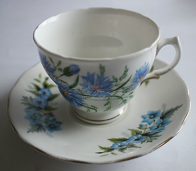 Royal Vale & Queen Anne Cup and Saucer Duo Blue Flowers