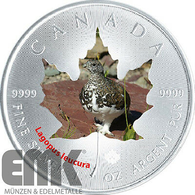 Kanada - 5 Dollar 2015 - Maple Leaf - Schneehuhn - Canada Wildlife II. (7.)