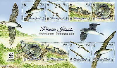 Pitcairn Islands 2016 MNH Phoenix Petrel WWF 8v M/S Birds Stamps