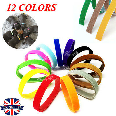 Set of 12 Adjustable Newborn Puppy ID Collar Bands Tag Whelping Pet Kitten UK