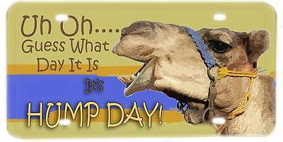 Uh Oh Guess What Day It Is, Its's Hump Day Mike the Camel License Plate
