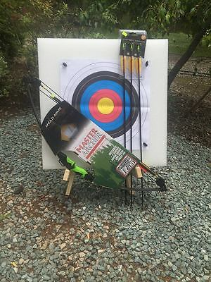 MASTER ARCHER KIT  BOW TARGET STAND STRAW  TARGET 20 PAPER FACES 4 PINS 5 arrows