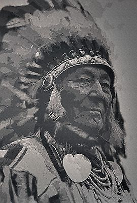 "Native American Indian, CANVAS ART, beautiful home decor, 24""x12"""