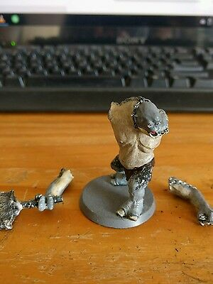 Lord of the rings cave troll painted metal model