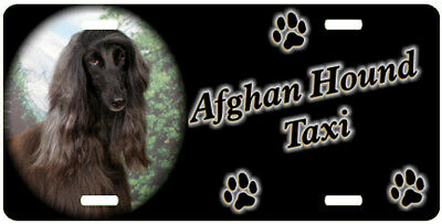 Afghan Hound 3 Taxi Line License Plate  (( SPECIAL LOW CLEARANCE PRICE ))