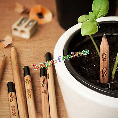 8 Pieces/Set  Bud  Pencil Plant - Herb Basil Tomato Green Pepper