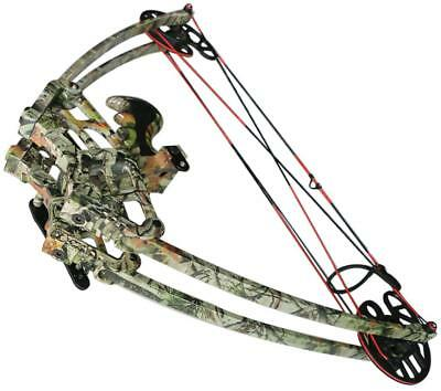 IRQ Archery 50Lbs Alloy Triangle Compound Bow Left & Right Hand Sports Hunting