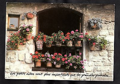 Posted 1991 View of a House Front/ Flowers, Houtland, Belgium