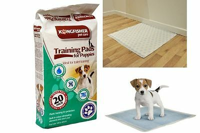 20 x LARGE HOUSE PUPPY DOG CAT PET POTTY TRAINING PADS LARGE PEE TRAIN PAD