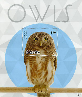 Grenada 2015 MNH Owls 1v S/S II Birds of Prey Barred Owl Stamps