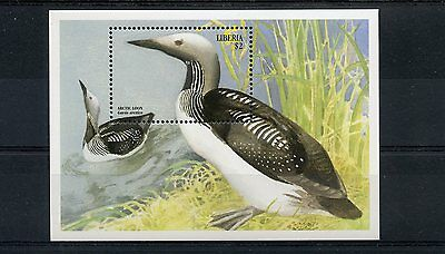 Liberia 1999 MNH Large Birds 1v S/S Arctic Loon Stamps