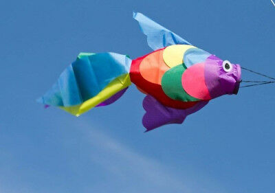 Fish Windsock Rainbow for Patio Porch Yard or Boat & Vegetable Garden for X Bird