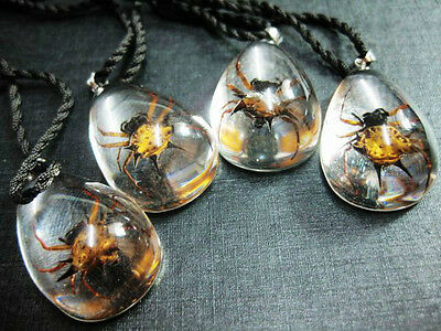 lots 12pcs cool style natural golden angle spider clear drop magic pendants