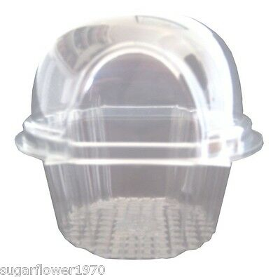 Single cupcake pods muffin clam pack containers box  FAST DESPATCH