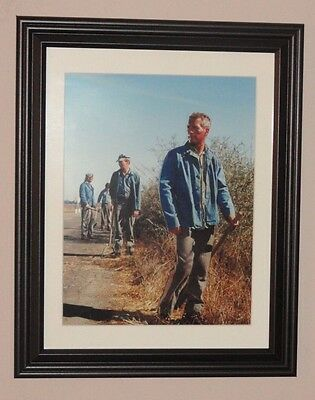 Paul Newman Cool Hand Luke 10 by 13 inches FRAMED photo poster print