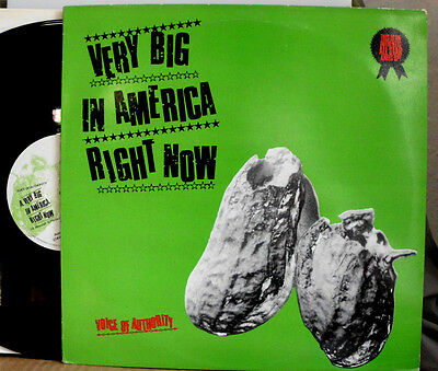 "Voice Of Authority Very Big In America Right Now 12 "" Maxi"