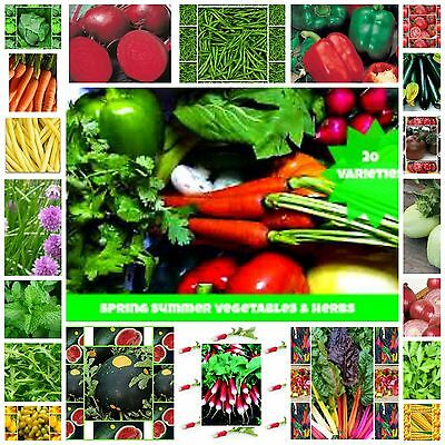 Mixed Seeds Spring Summer Heirloom Vegetable & Herb Seeds 20 Packets Bulk Value