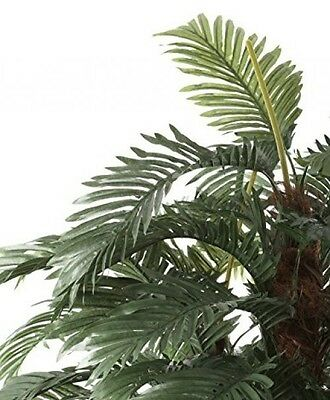 Closer To Nature Artificial 6ft Areca Palm Tree - Artificial Silk Plant And